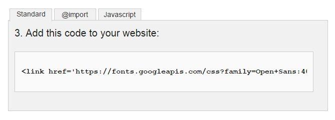 add code google fonts