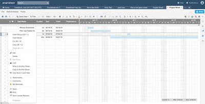 Smartsheet Screenshot (2)